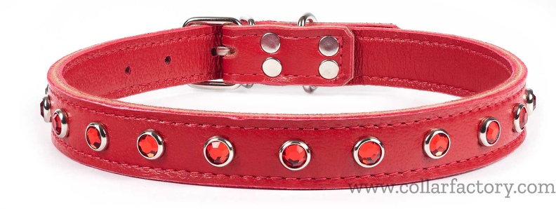 Small red collar with D ring by buckle