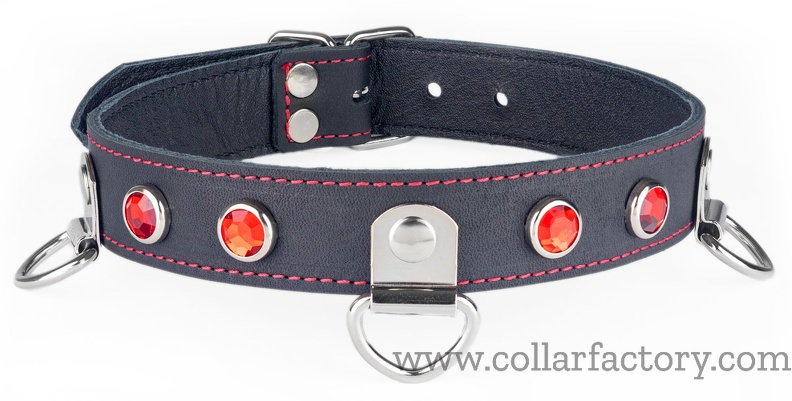 Collar with three D-rings with clamps