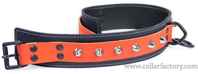 custom_collar-orange_on_black.jpg