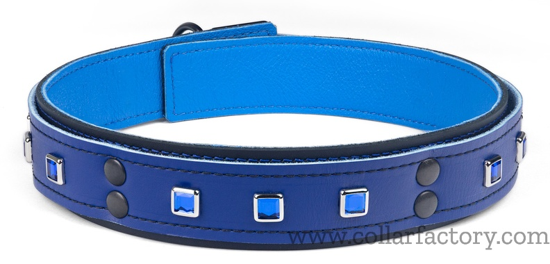 Double strap Collar with sapphire squares