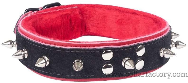 Black and Red collar with spikes