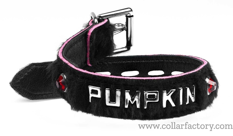 black_pumpkin_with_locking_buckle.jpg
