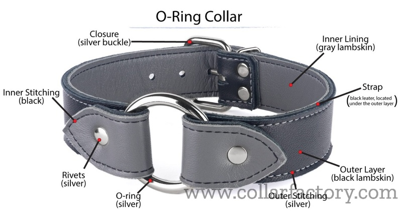 Terminology of an O-Ring collar