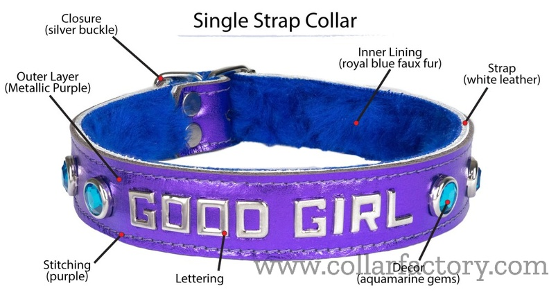 Terminology of a Single Strap collar