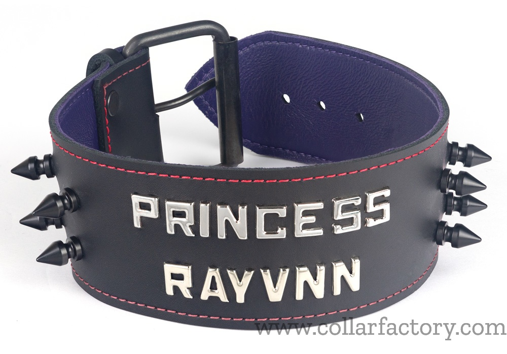 princess-rayvnn2